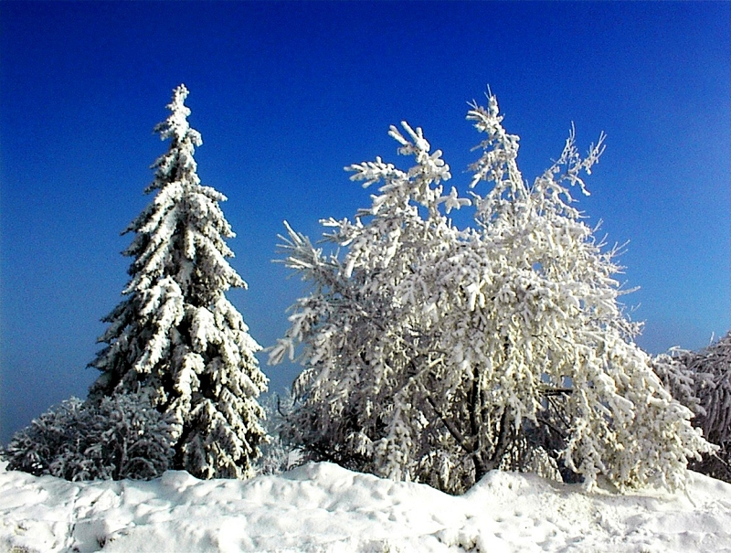k-Winterlandschaft Hain 3_edited