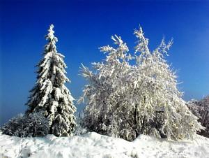 k-Winterlandschaft Hain 3_edited
