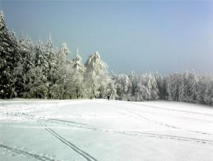 k-Winterlandschaft Hain 5