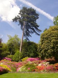 k-Park der Villa Carlotta